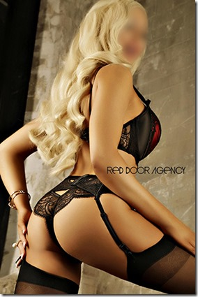 Find amazing escorts for private sex sessions